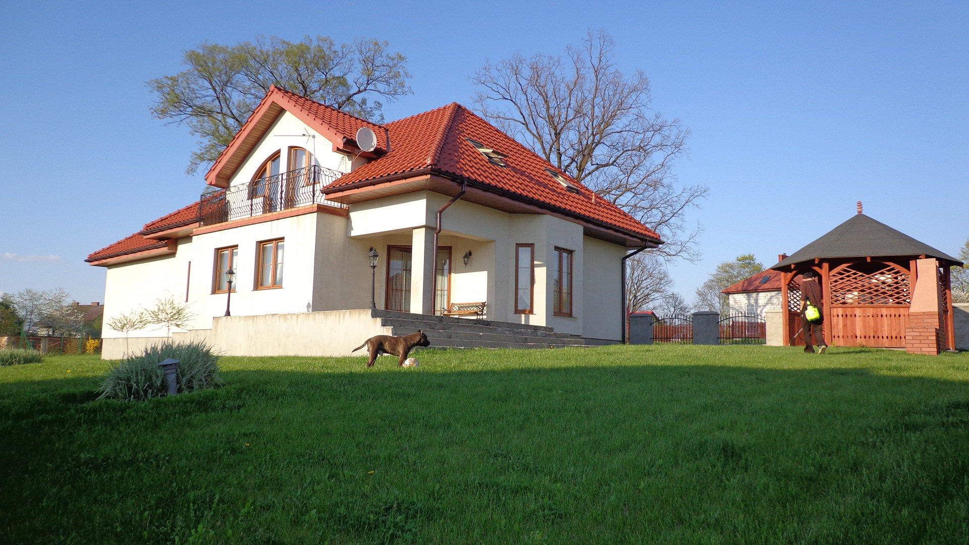 damian-augustynowicz-1385585620_1167.jpg
