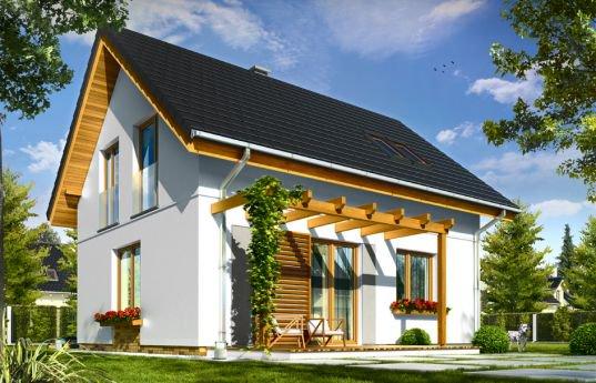 projekt-domu-ania-wizualizacja-tylna-1359632289.jpg