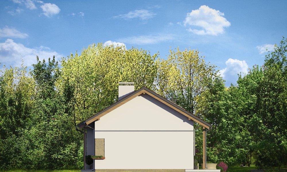 projekt-domu-biedronka-2-elewacja-boczna-1420722191-aka50d73.jpg