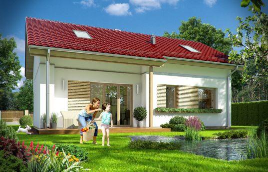 projekt-domu-biedronka-2-wizualizacja-tylna-1420721561.jpg