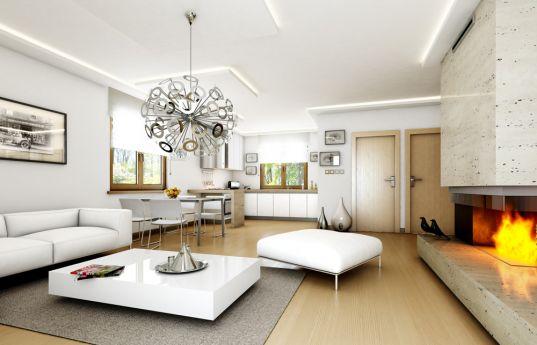 projekt-domu-czarus-wnetrze-fot-2-1371773584-yn_fypw7.jpg