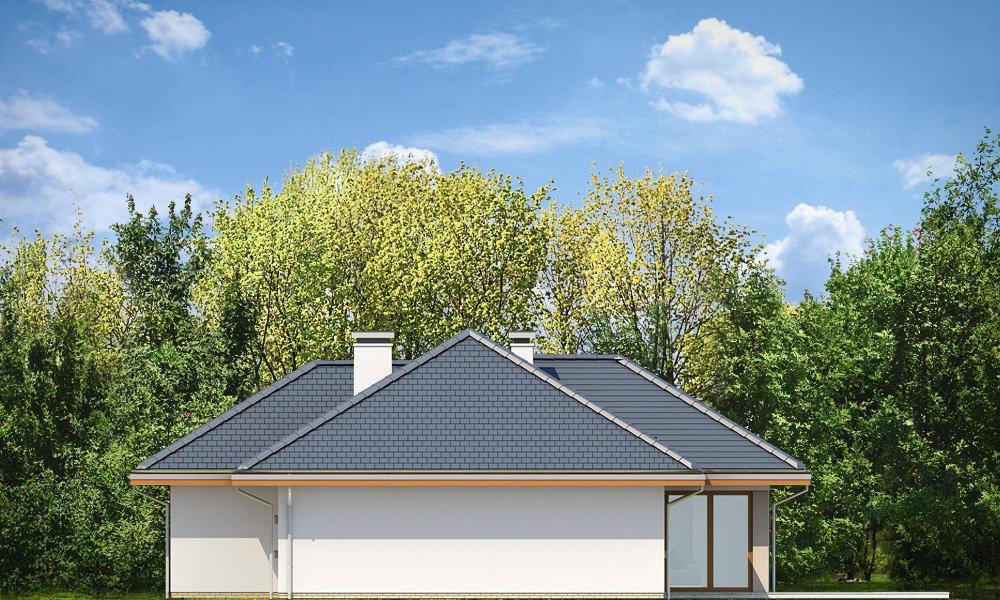 projekt-domu-dom-na-miare-2-elewacja-tylna-1433239890-q5dod8gj.jpg