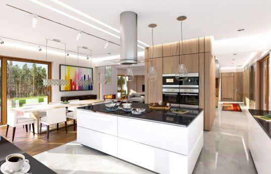 projekt-domu-dom-z-widokiem-wnetrze-fot-4-1401800052-qqxbxjc0-1407824922-iwe0a9kx.jpg