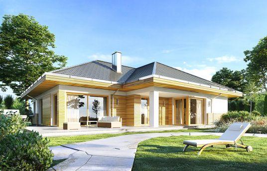 projekt-domu-doskonaly-2-wizualizacja-ogrodowa-2-1485419573-w0z8saix.jpg