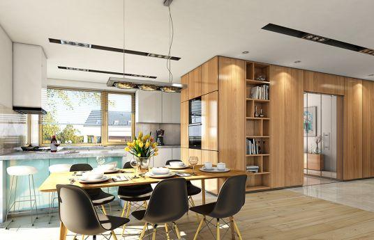 projekt-domu-doskonaly-2-wnetrze-fot-2-1502349554-ieh8i5w8.jpg