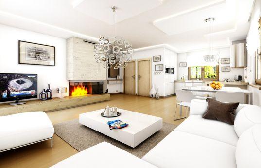 projekt-domu-jak-marzenie-z-garazem-wnetrze-fot-1-1371773785-egp02jfl.jpg
