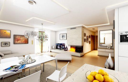 projekt-domu-jak-marzenie-z-garazem-wnetrze-fot-3-1371773786-bcjn1iqp.jpg