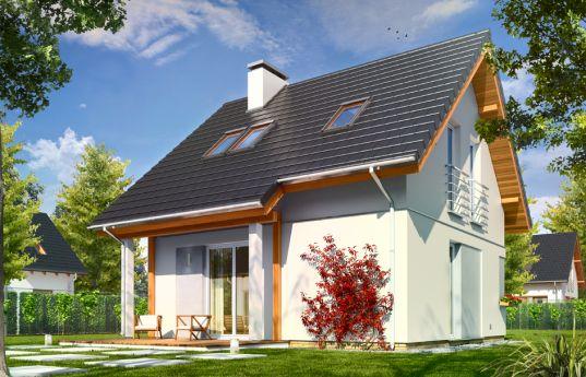 projekt-domu-mikrus-wizualizacja-tylna-1352970907.jpg