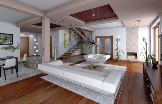 projekt-domu-neptun-wnetrze-fot-2-1370944749-1z2w9tuj.jpg