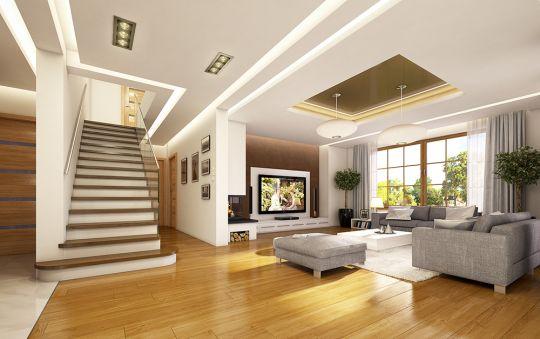projekt-domu-ofelia-wnetrze-fot-2-1449130682-1z3zohmp.jpg
