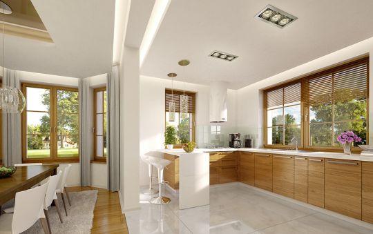 projekt-domu-ofelia-wnetrze-fot-4-1449130685-e0fqmyom.jpg