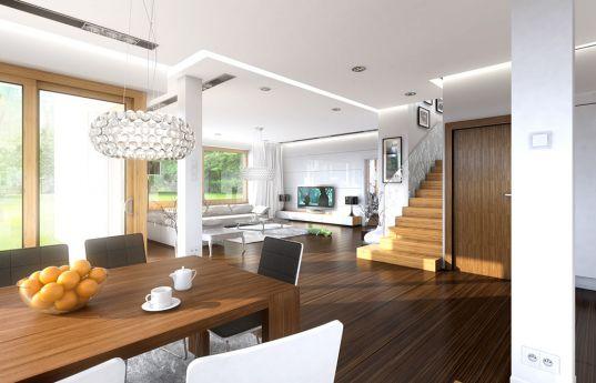 projekt-domu-opal-2-wnetrze-fot-1-1392212320-l1rwf5hl.jpg