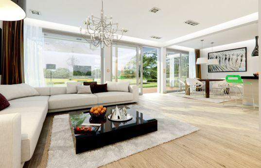 projekt-domu-otwarty-2-wnetrze-fot-3-1378967151-fr_x0pnb.jpg