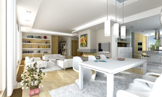 projekt-domu-otwarty-wnetrze-fot-1-1371203297-przeqtss.jpg