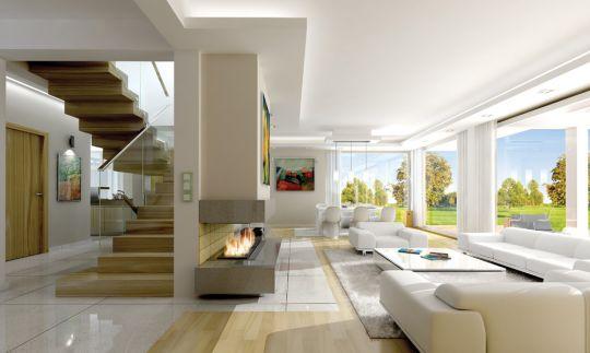 projekt-domu-otwarty-wnetrze-fot-2-1371203310-wfr49pga.jpg