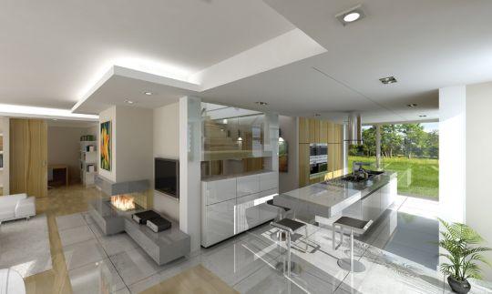 projekt-domu-otwarty-wnetrze-fot-4-1371203324-gmfjacam.jpg