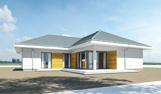 projekt-domu-parterowy-wizualizacja-tylna-2-1485430567-j9w2vgi9.jpg