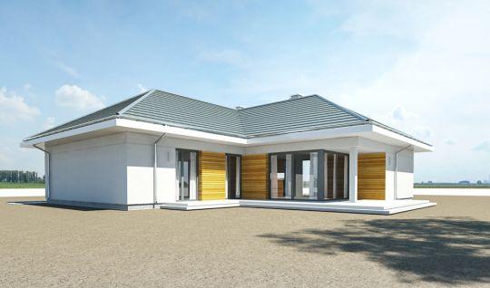 projekt-domu-parterowy-wizualizacja-tylna-4-1485430570-wsxgjh9o.jpg