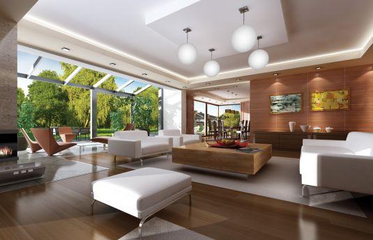 projekt-domu-prestizowy-wnetrze-fot-1-1372238381-bs1vtxp4.jpg
