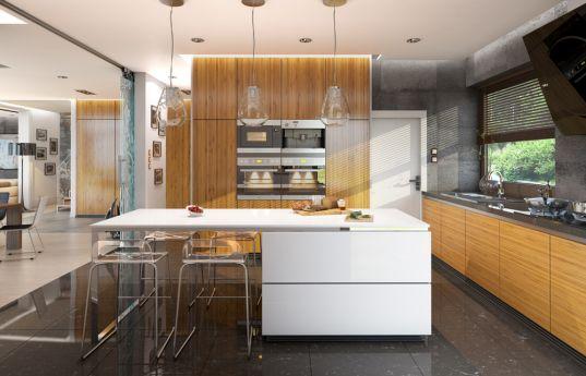 projekt-domu-rezydencja-lesna-wnetrze-fot-4-1390823027-9a_i1hh2.jpg