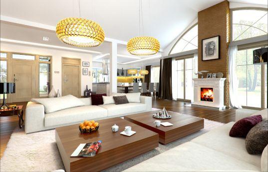 projekt-domu-rezydencja-parkowa-2-wnetrze-fot-2-1379495196-ysn2fp_r.jpg