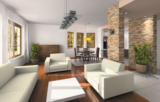 projekt-domu-saga-wnetrze-fot-2-1372687109-zhb7jjys.jpg