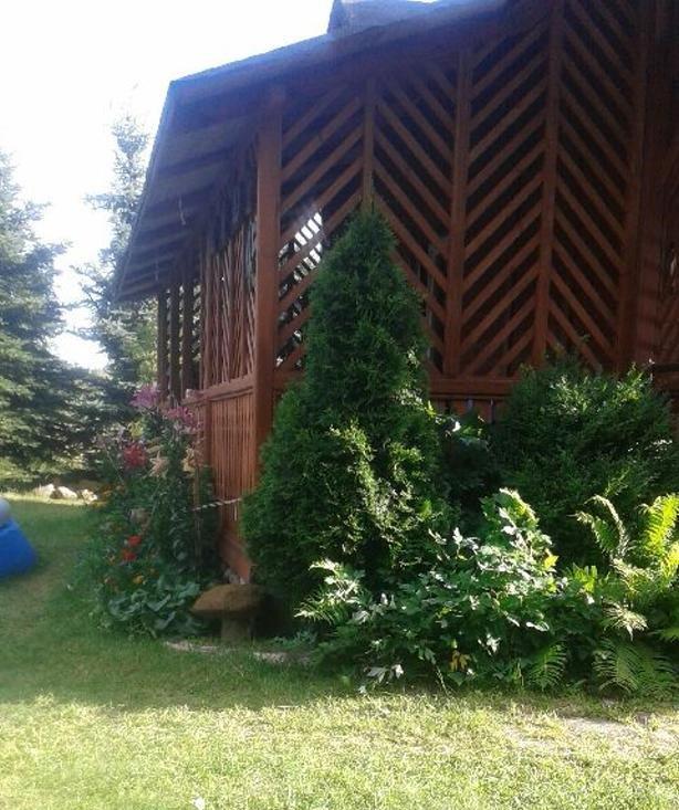 projekt-domu-sosenka-drewniana-fot-27-1470991118-h2clr_dt.jpg