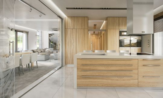 projekt-domu-willa-atrium-wnetrze-fot-1-1447771580.jpg
