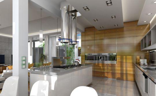 projekt-domu-willa-atrium-wnetrze-fot-2-1372856020-hrdz3kgn.jpg