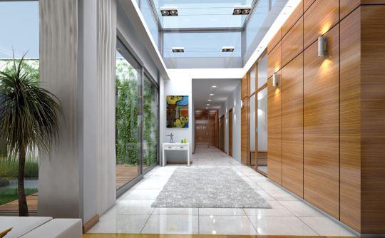 projekt-domu-willa-atrium-wnetrze-fot-3-1372856039-zrk8eize.jpg