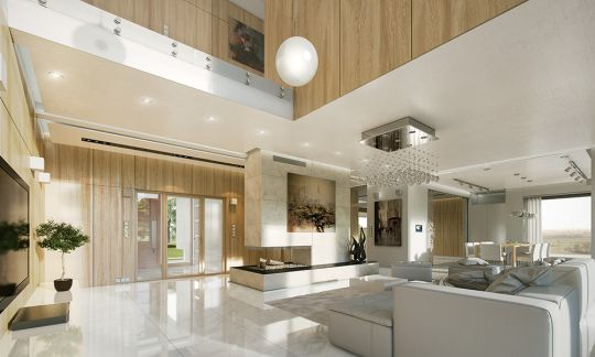 projekt-domu-willa-atrium-wnetrze-fot-3-1447771627.jpg