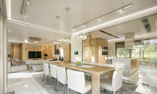 projekt-domu-willa-atrium-wnetrze-fot-5-1447771670.jpg