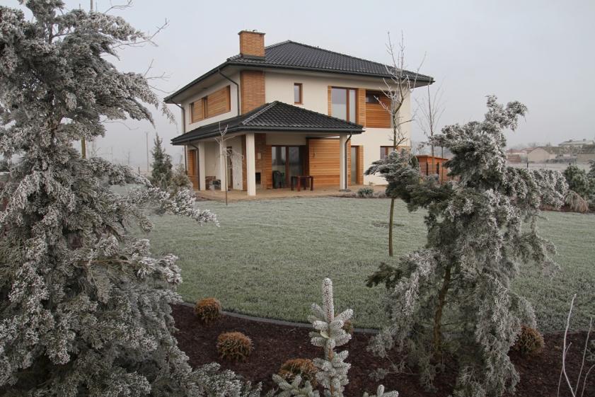 projekt-domu-willa-na-borowej-fot-31-1474539390-pllcnpgt.jpg