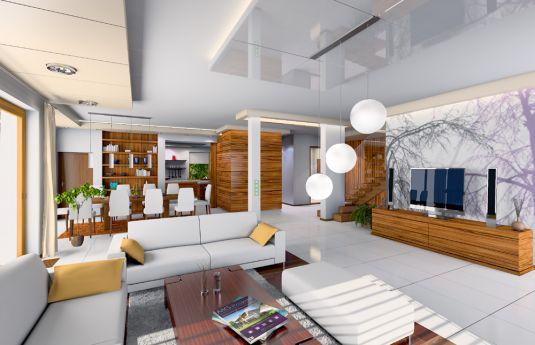 projekt-domu-willa-z-basenem-wnetrze-fot-2-1372859791-v_nzkvyo.jpg
