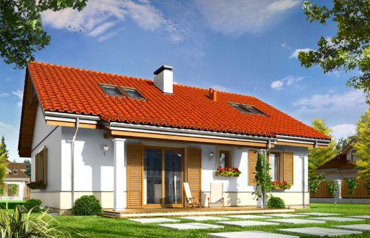 projekt-domu-zabka-2-wizualizacja-tylna-1354792513.jpg