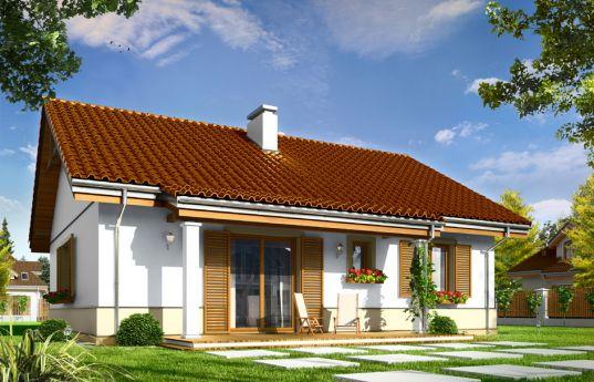 projekt-domu-zabka-wizualizacja-tylna-1352367570.jpg