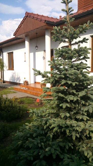 proyekt-doma-solnyechnyy-s-garazhom-fot-8-1412058883-4ql6tmos.jpg