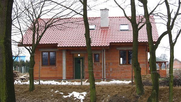 proyekt-doma-zhabka-2-fot-8-1425472201-gzj5acpx.jpg